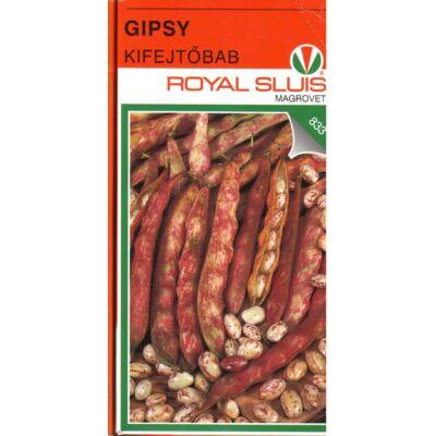 Gipsy   100 gr