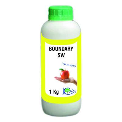 BOUNDARY SW   0,2 liter