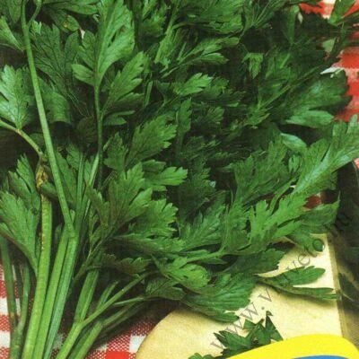 Metélőpetrezselyem  (simalevelű)   50 gr